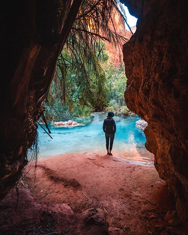 Lost Lagoons 🌴.