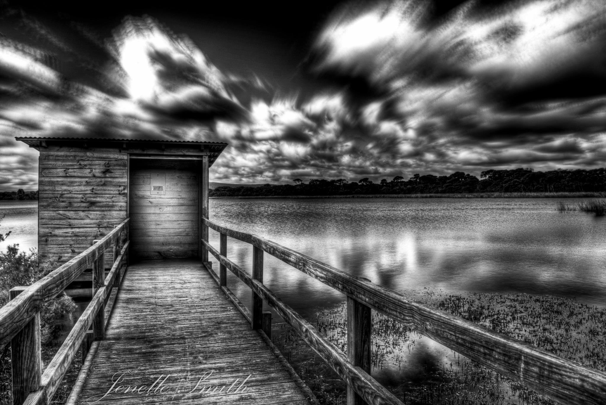 Lake Seppings.jpg