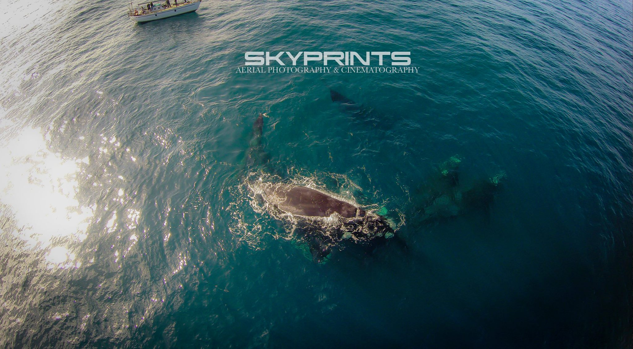 SKPRINTS Aerial Photography and Cinematrography