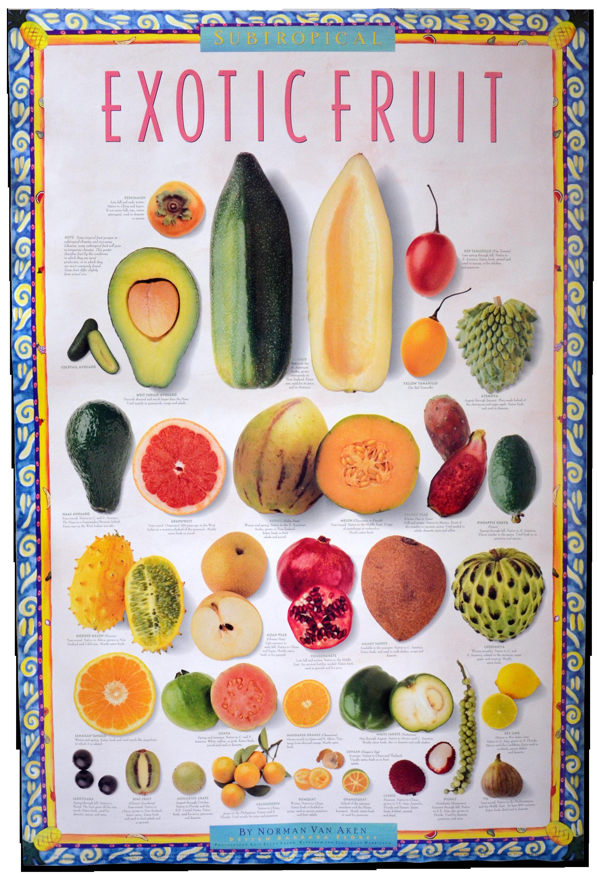 Subropical Exotic Fruits