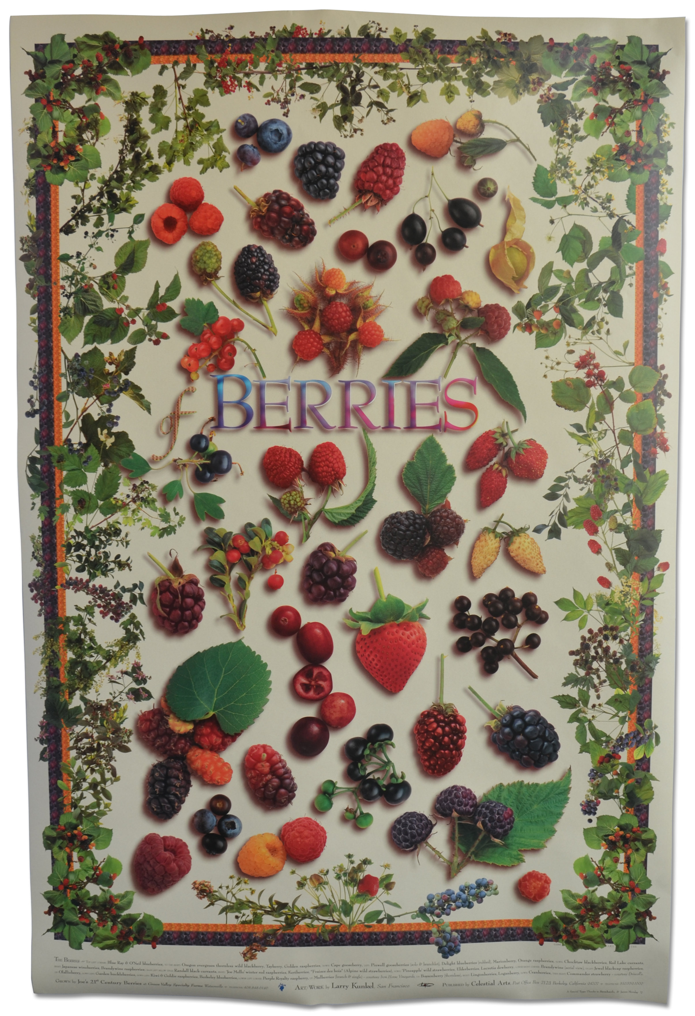 The Berries poster