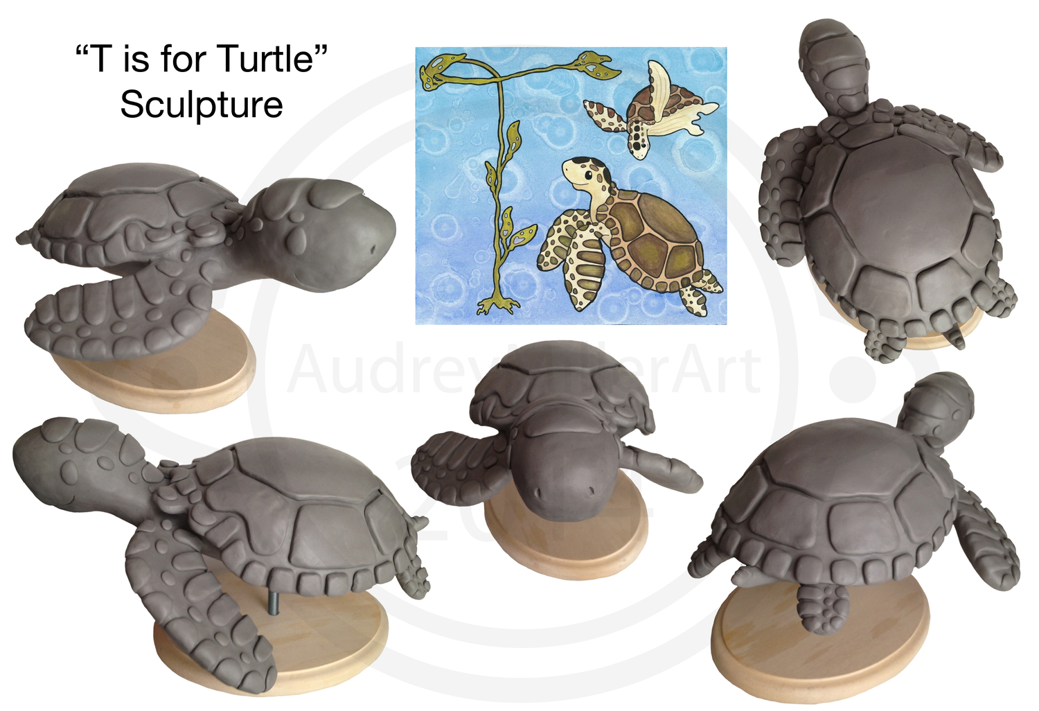 Turtle Turn Around.jpg