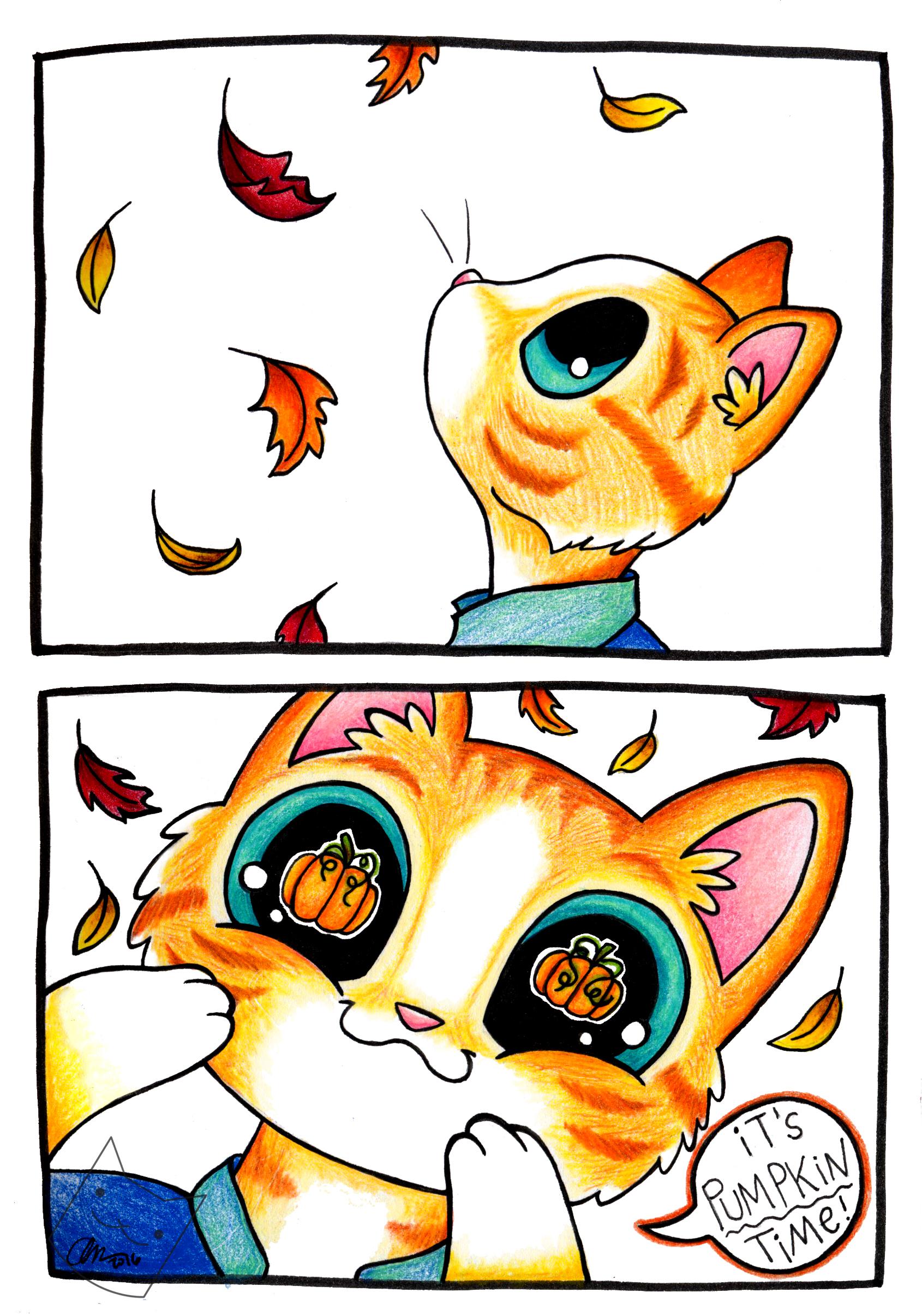 """It's Pumpkin Time!"""