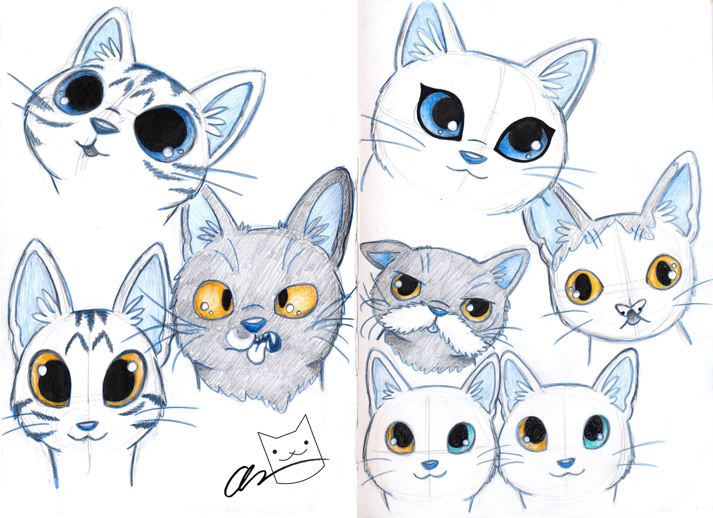 internet cat sketches.jpg