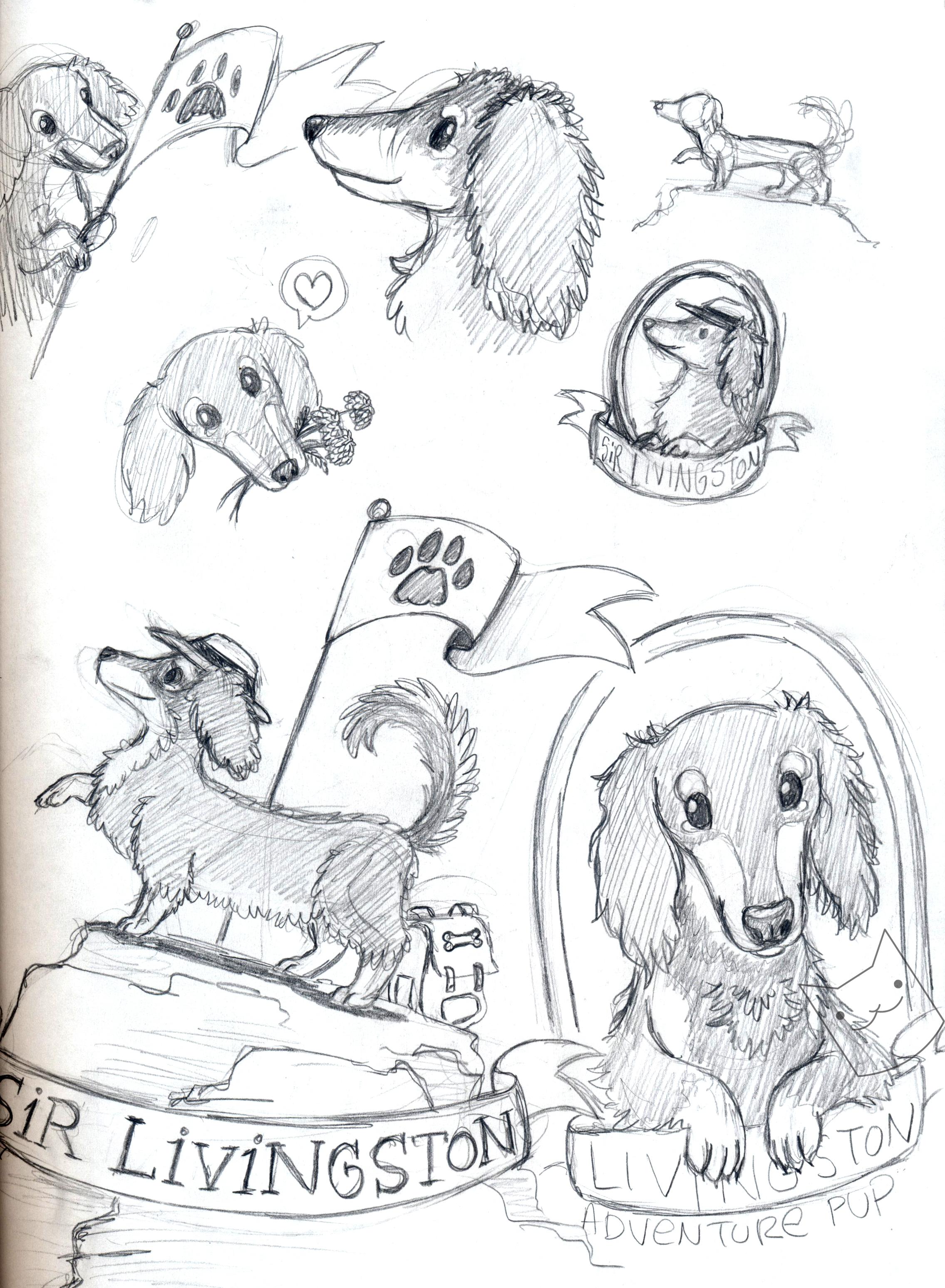 livingston marigold sketches.jpg