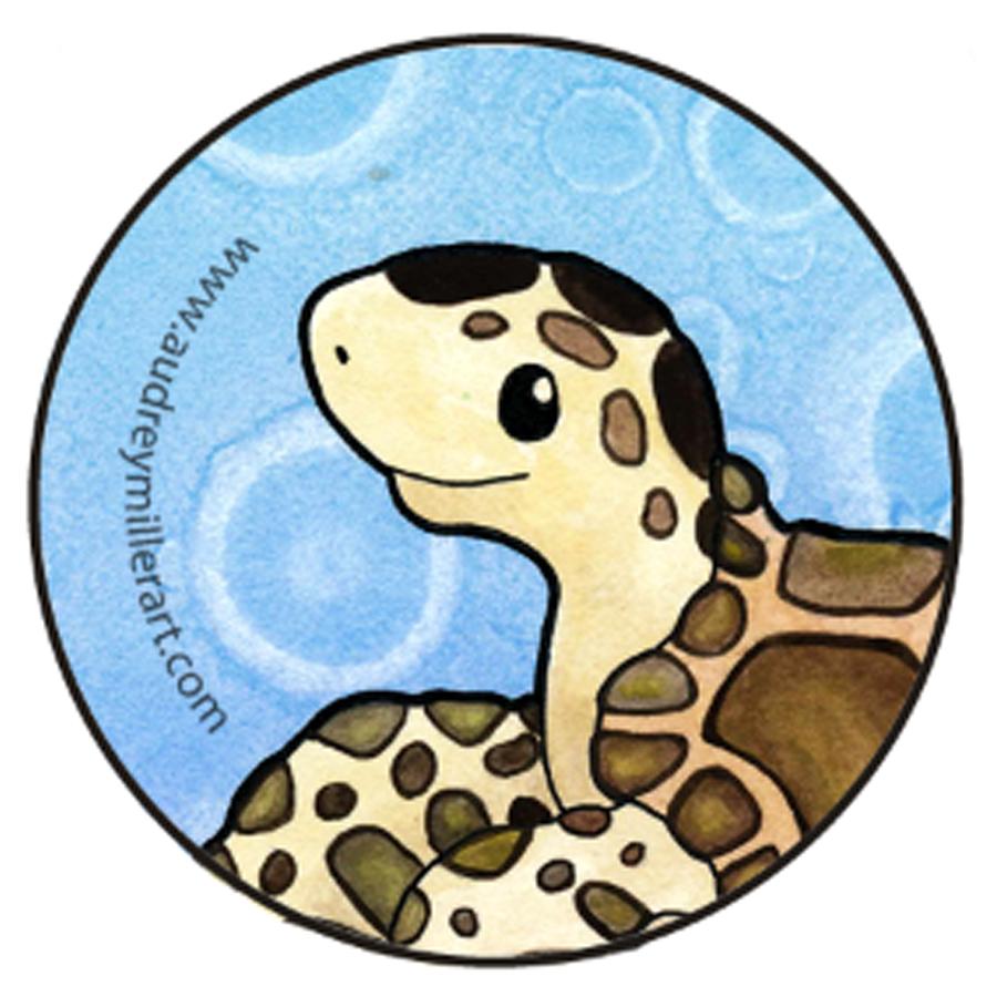 sea turtle button.jpg