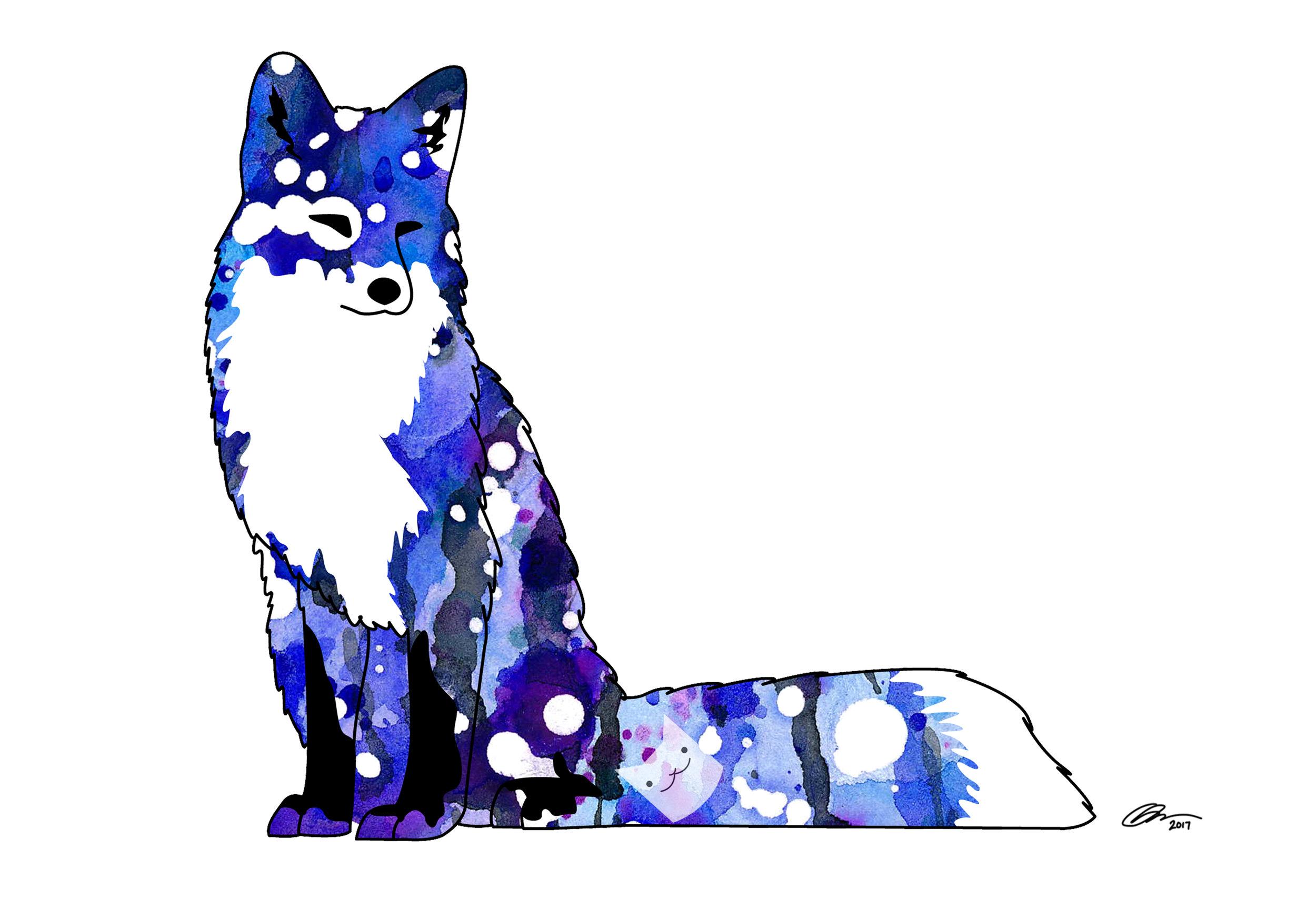 blue fox 13x19.jpg