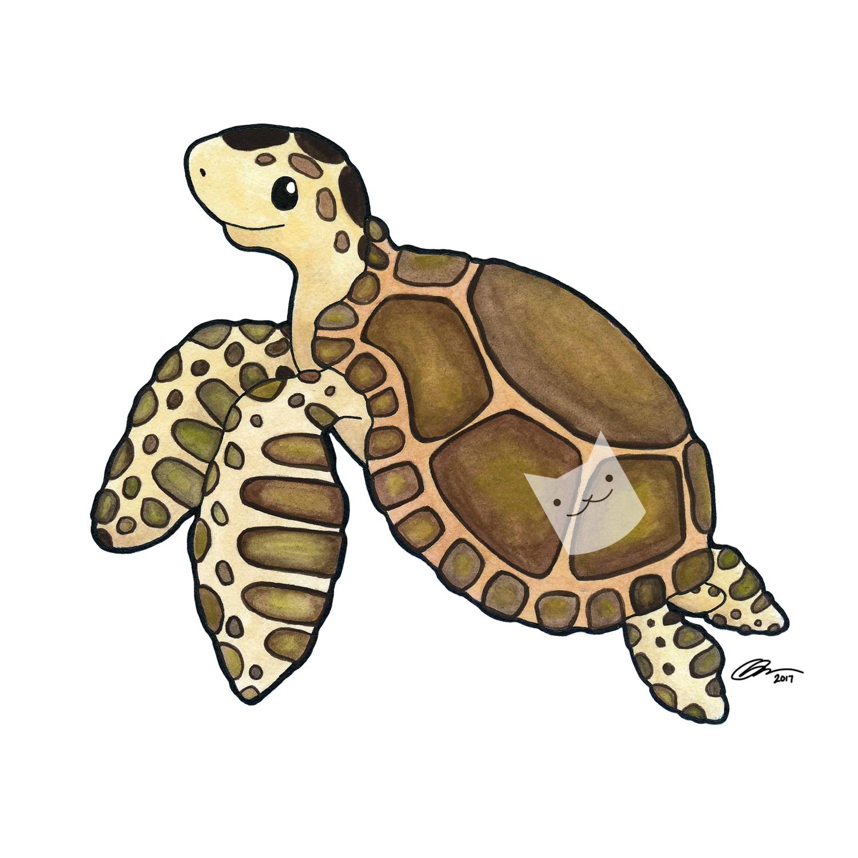 turtle 5x5 print.jpg