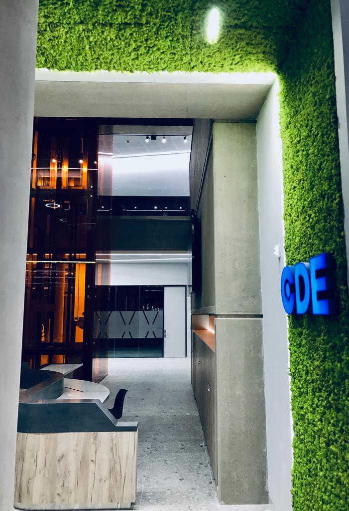 Living moss wall CDE Global