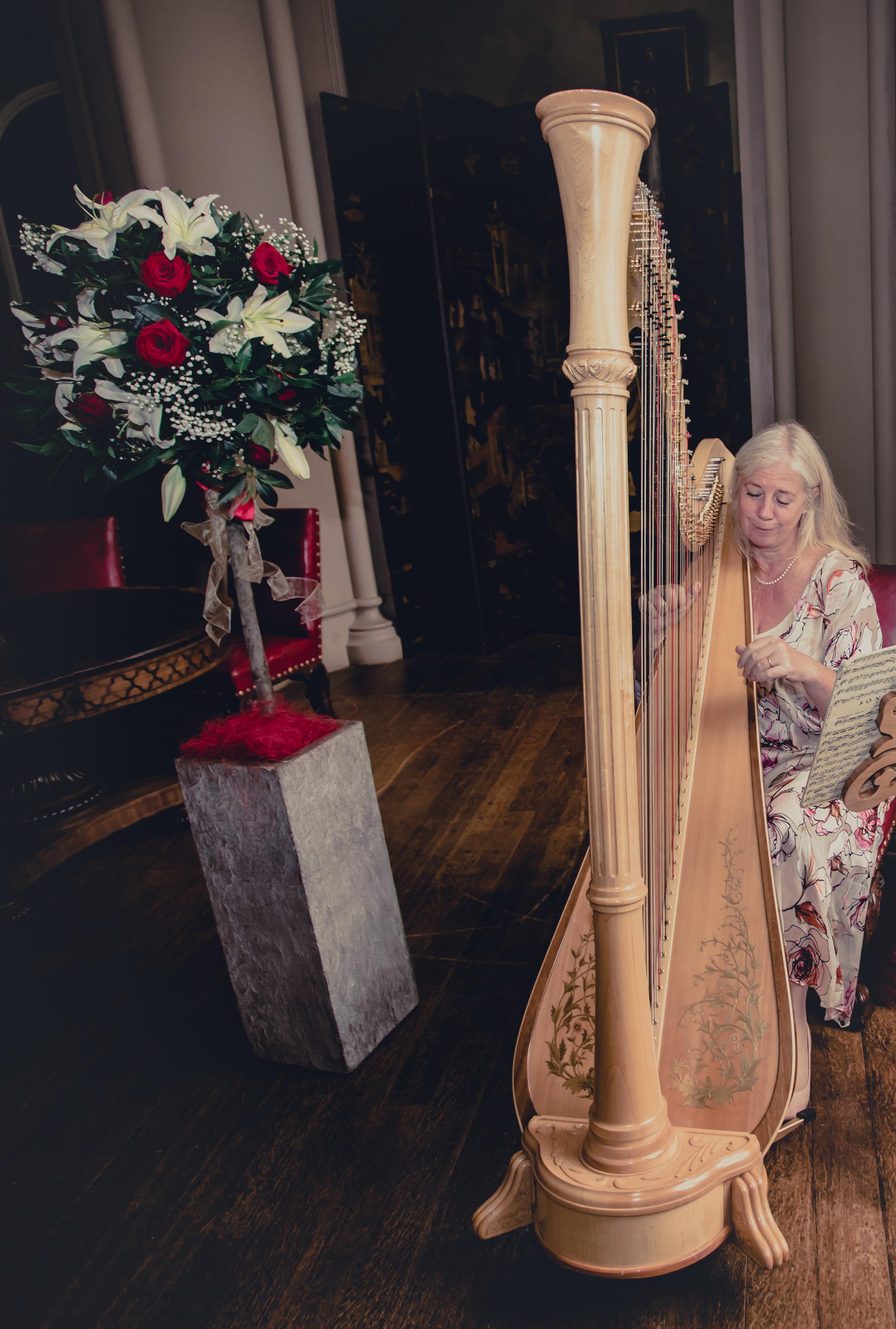 005  - Xenia Horne UK Harpist by Mark Pugh www.markpugh.com -6.JPG