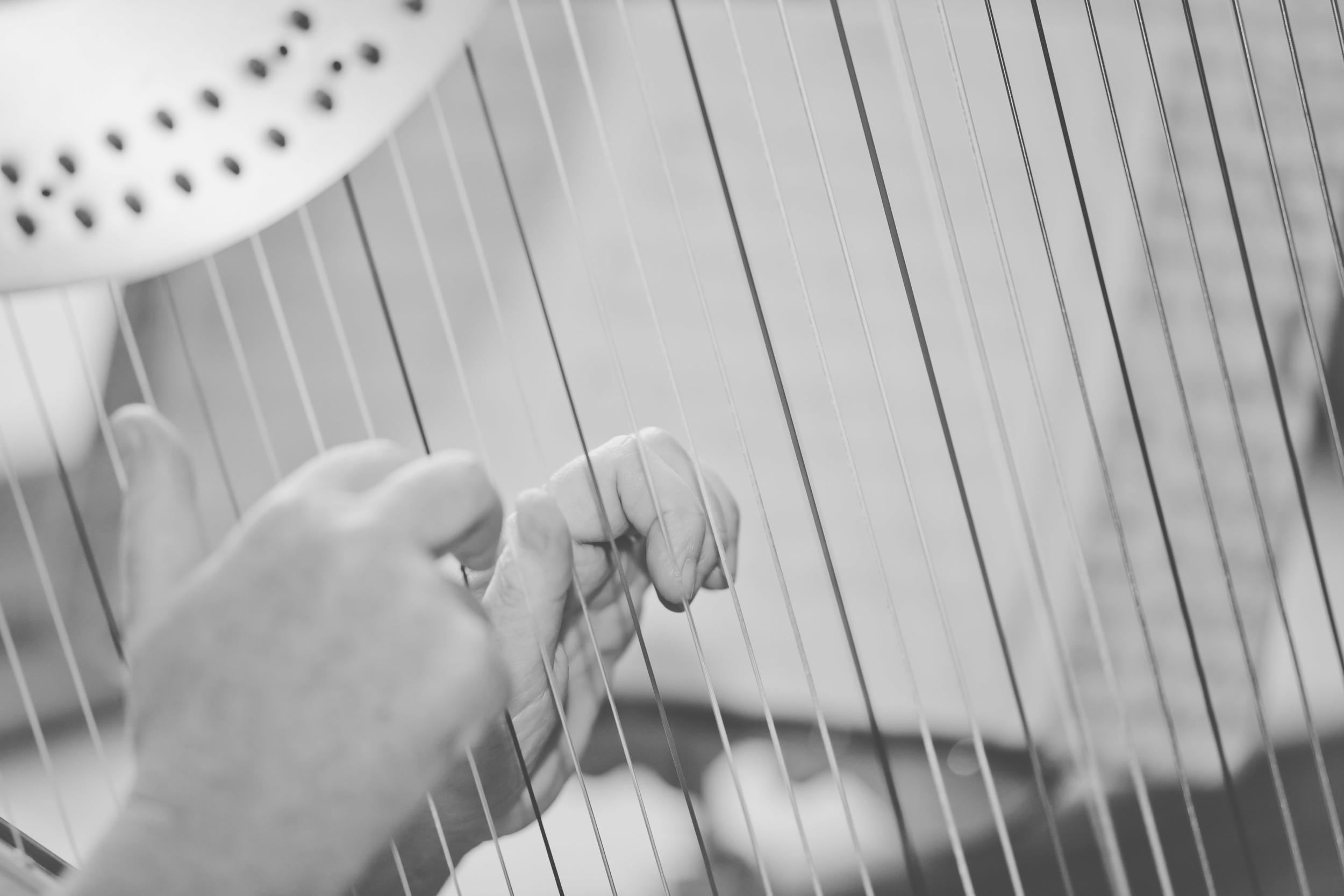010  - Xenia Horne UK Harpist by Mark Pugh www.markpugh.com -9.JPG