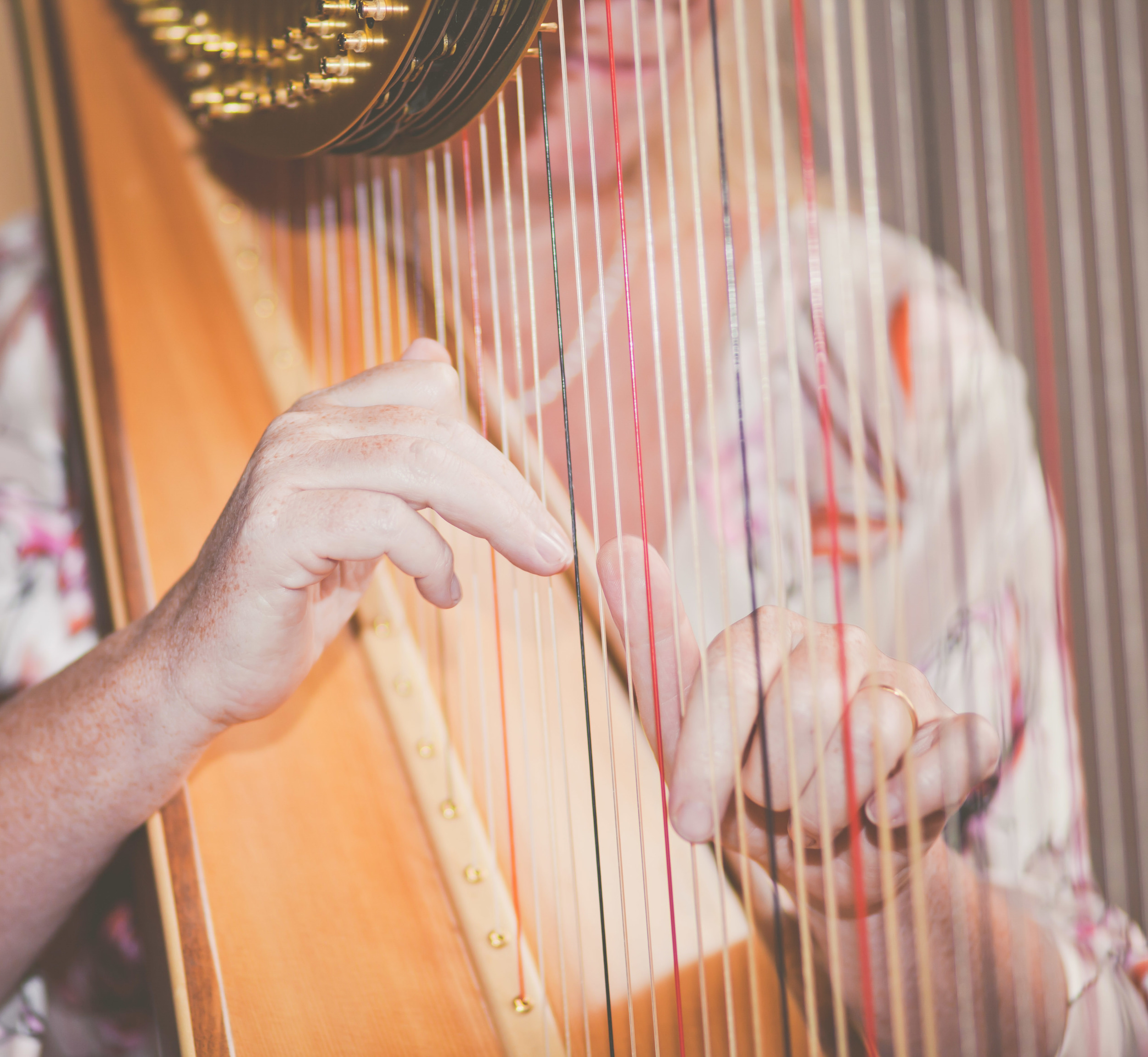 014  - Xenia Horne UK Harpist by Mark Pugh www.markpugh.com -15.JPG