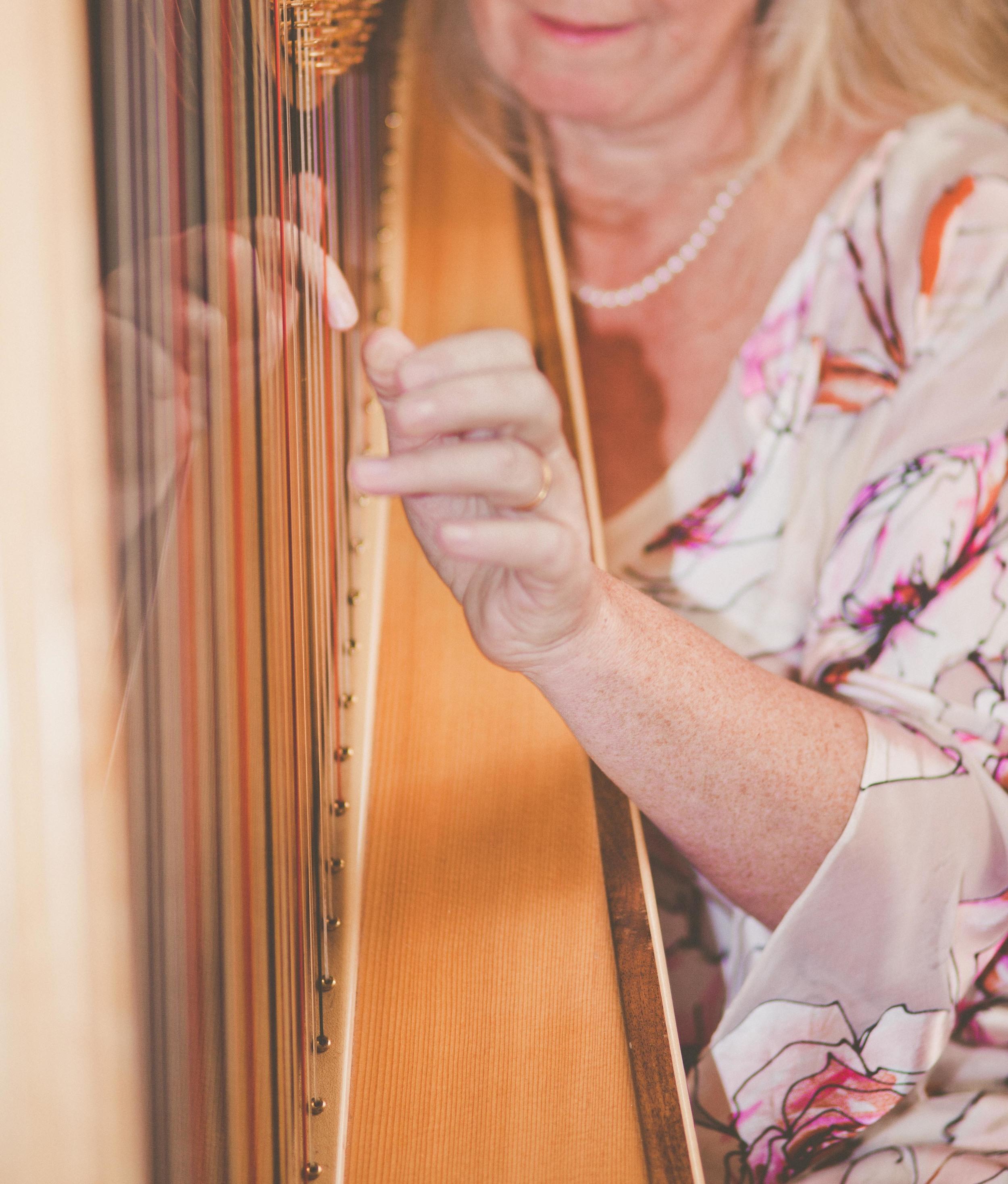 018  - Xenia Horne UK Harpist by Mark Pugh www.markpugh.com -18.JPG