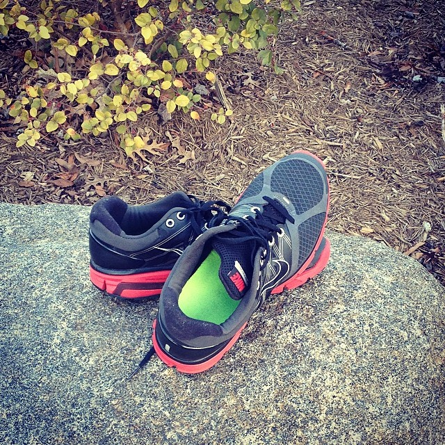 _RetiredShoe__NikeRunning__Nike__NikePlus__FiftyMiles__DualFusionRun_I_promise_I_left_them_right_there_on_the_trail._Lol.jpg