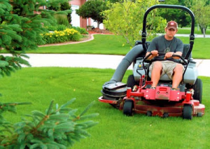 Lawn Maintenance Consultation  Planet Plant It, Inc. does not provider lawn maintenance services at this time, but we can certainly set you up with service providers that we trust to do a good job for our customers.