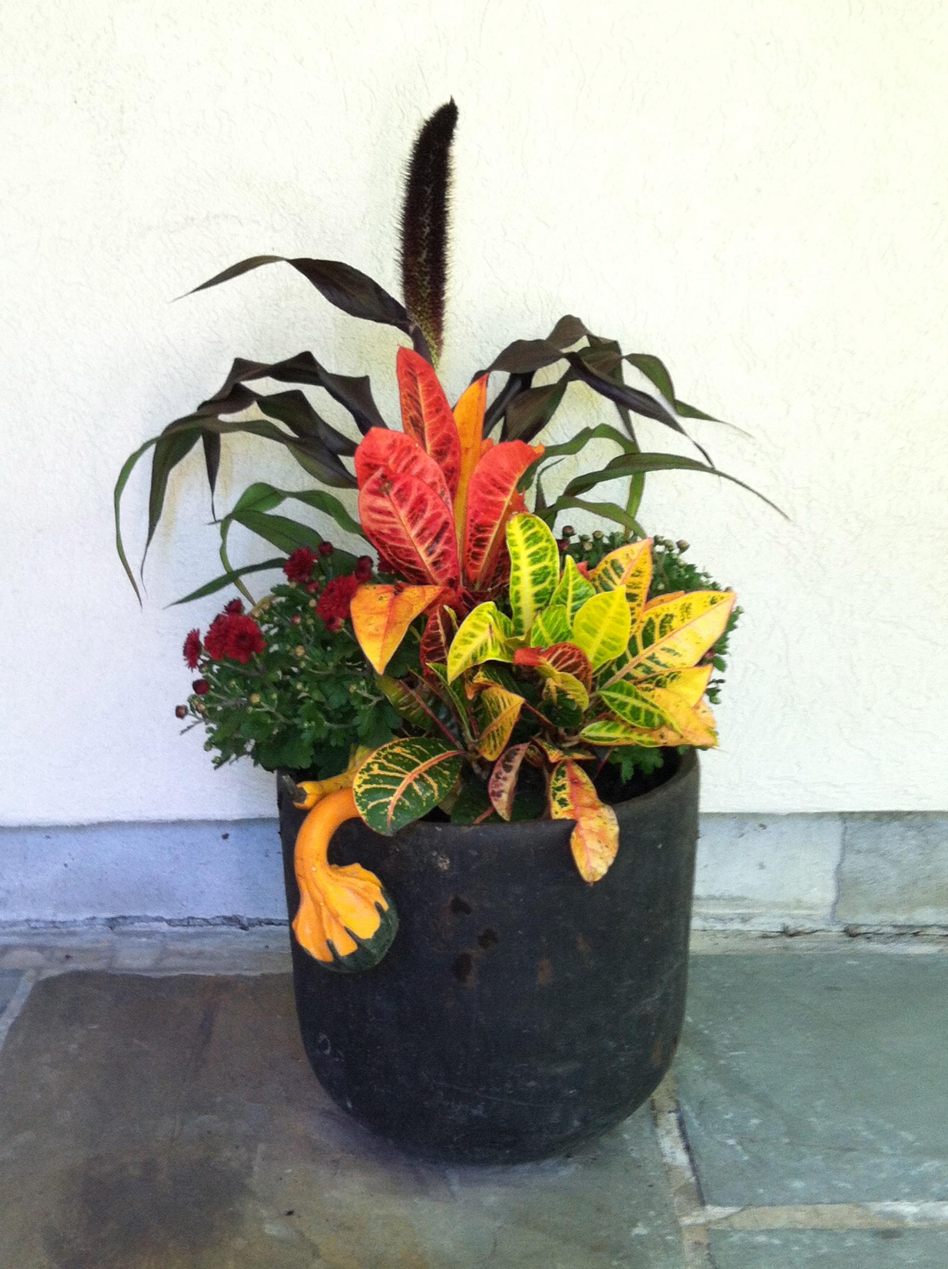 Fall planter by door.