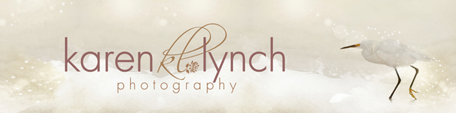 Collaboration with Karen Lynch Photography to capture the finishing touches on your home.