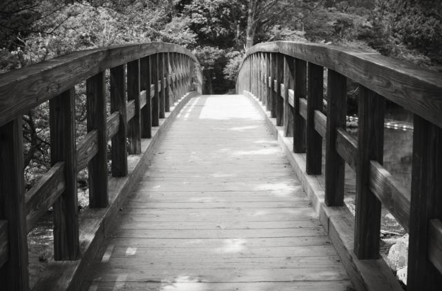 an old bridge.jpg