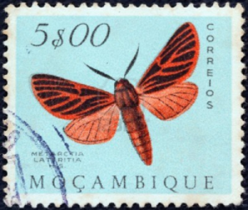 15876960-mozambique--circa-1953-a-stamp-printed-in-mozambique-from-the-butterflies-and-moths-issue-shows-a-me.jpg