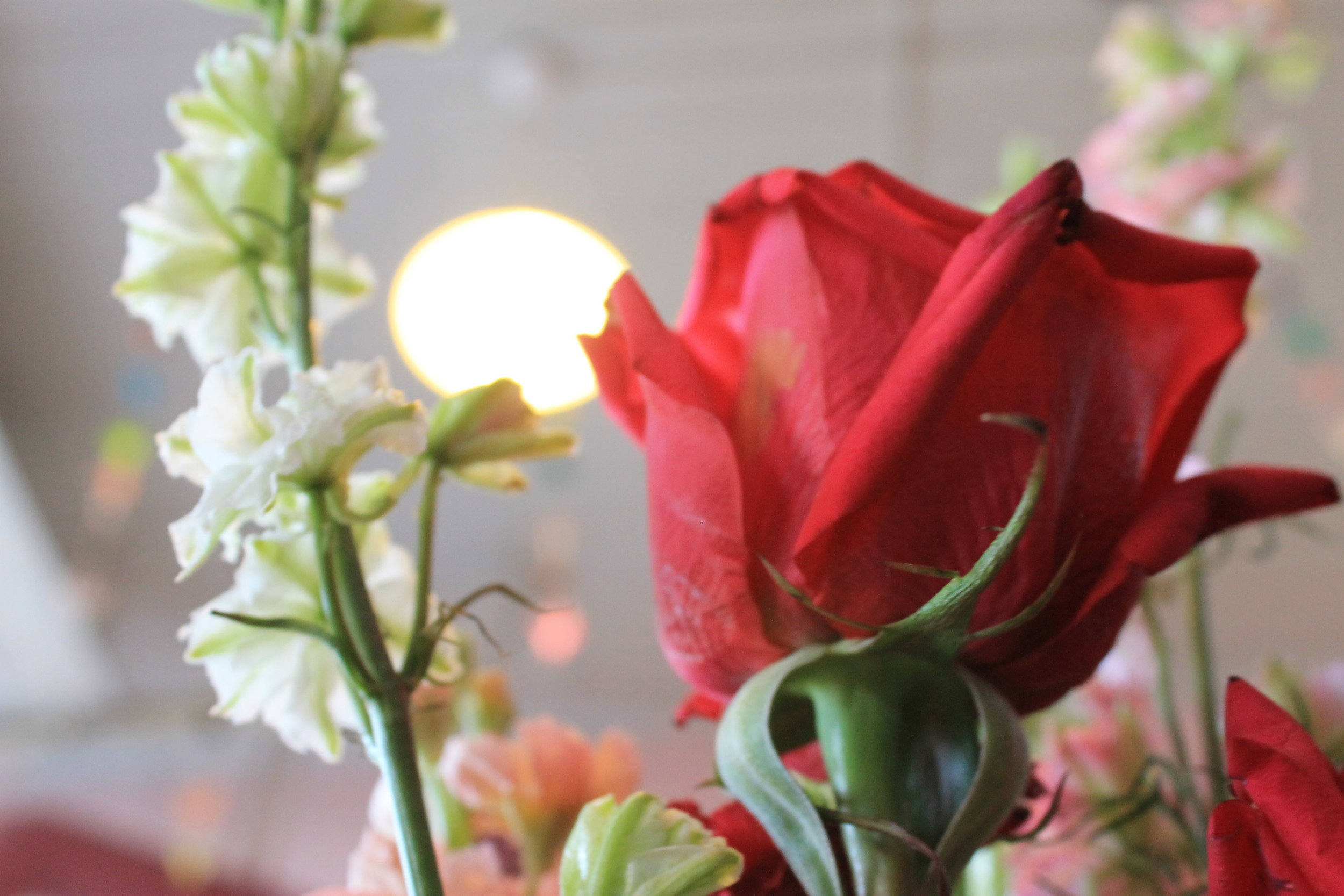 """Fresh cut flowers donated by Relles Florist adorn every breakfast table at Wellspring Women's Center. They are part of Wellspring's mission to serve it's guests in an atmosphere of """"hospitality, dignity and love."""""""