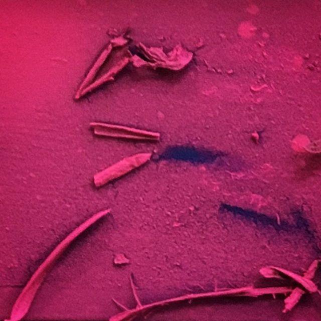#bitsandbobs #spray #pink