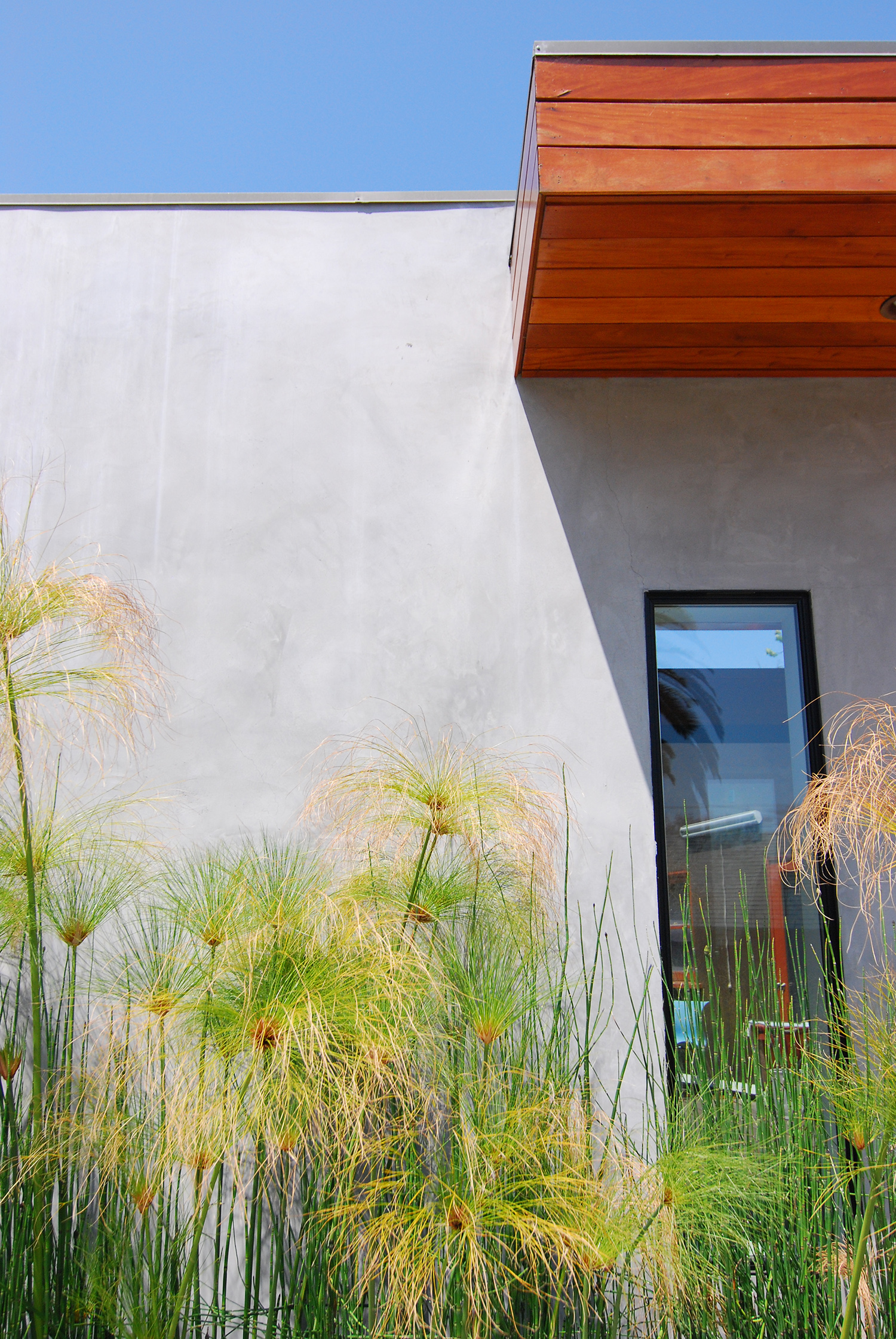 Courtyard_3.jpg