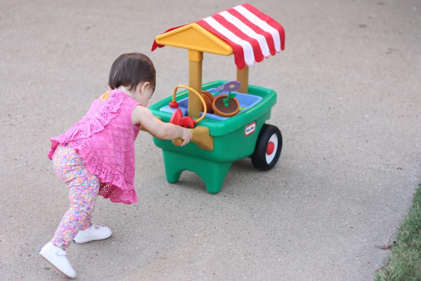 pushing wheelbarrow