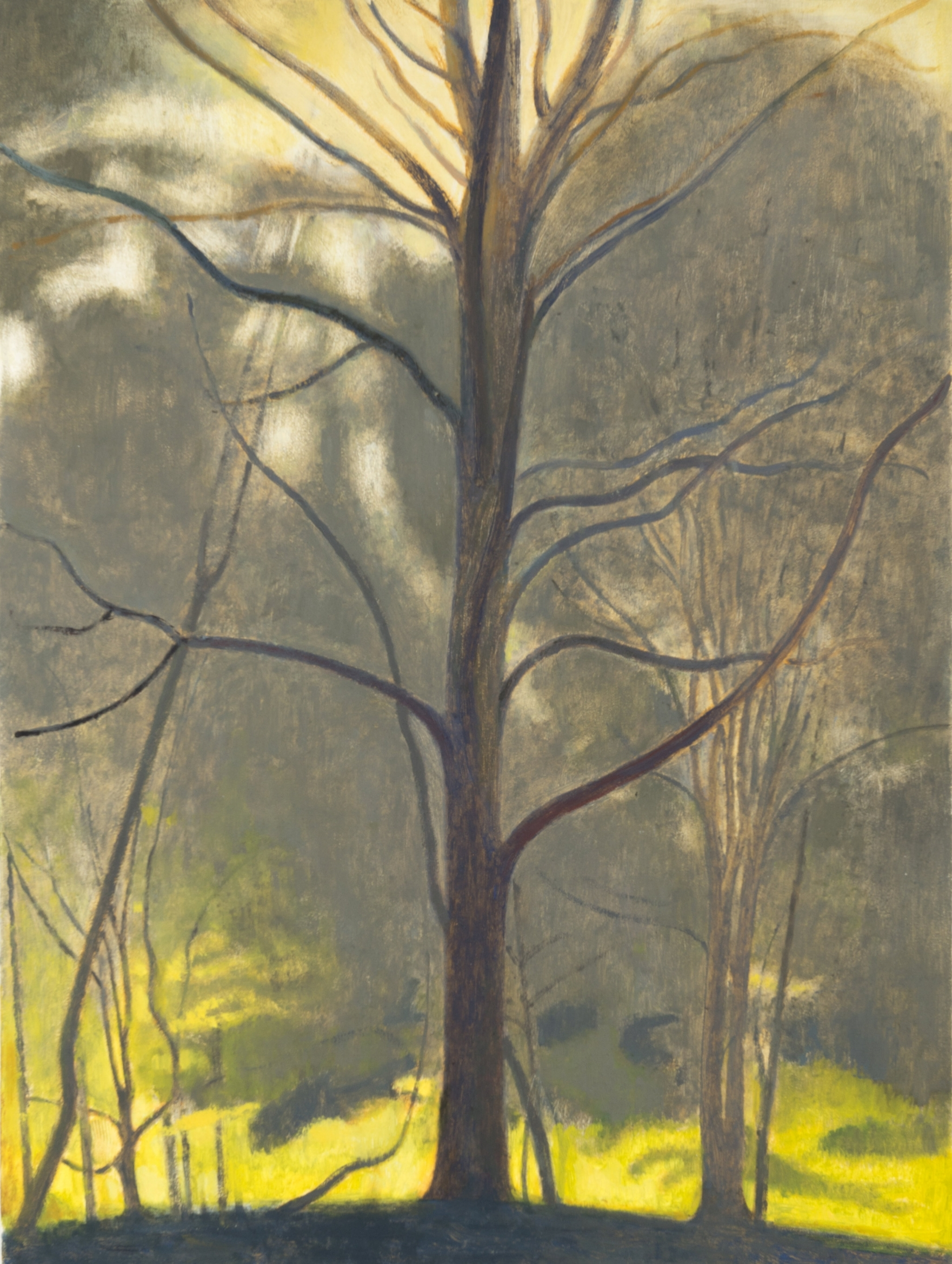 """Tree  , 2017, oil on panel, 12 x 9 inches,      Upland     January 6 - February 10, 2018    Opening Reception - Saturday, January 6, 3-6 pm      Elizabeth Harris Gallery    529 West 20th Street    New York, NY 10011    212.463.9666      press release   Elizabeth Harris Gallery is pleased to present Upland, an exhibition of new work by Ron Milewicz. This will be his fourth solo exhibition with the gallery. It will feature paintings and drawings based on the rural landscape of upstate New York.  For two years Milewicz made drawings in the woods, approaching nature simply and directly with only pencil and paper. In these intimately scaled portrayals of trees, meadows, ponds, and skies, the silvery graphite is seemingly soaked into the soft cotton paper. Critic David Ebony writes in his exhibition essay: """"Milewicz trees are no ordinary specimens . . . the trees appear as spectral presences. Nurtured by ethereal light, crystalline air, and vaporous clouds of moisture—conveyed by finely nuanced tonal shifts—these ancient, ancestral trees possess firm roots and an insistent verticality."""" Milewicz's absorption into nature is evident, and the drawings are suffused with solitude.  Milewicz began making paintings of his drawings of landscapes. Relying on memories that are as much emotional as visual, Milewicz's paintings are faithful to both interior and exterior experience. They regard nature as a spiritual wellspring, a view Milewicz shares with artists ranging from the Chinese scholar-painter to the American Luminist. His works assert the overwhelming truth of Nature's elemental and mystical power. Reverence, however, is not confused with nostalgia. Conscious of the contemporary existential threat to Nature, Milewicz's depictions of landscape can be seen as elegies for the landscape itself. They present Nature's force along with its vulnerability, silently marveling at the central miracle of being while admitting the miraculous fact of inevitable dissolution.  At the core o"""