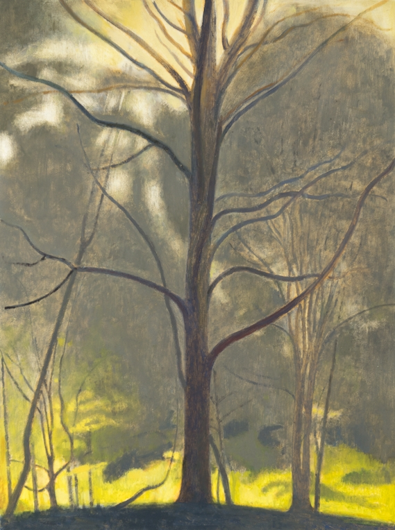 Tree , 2017, oil on panel, 12 x 9 inches