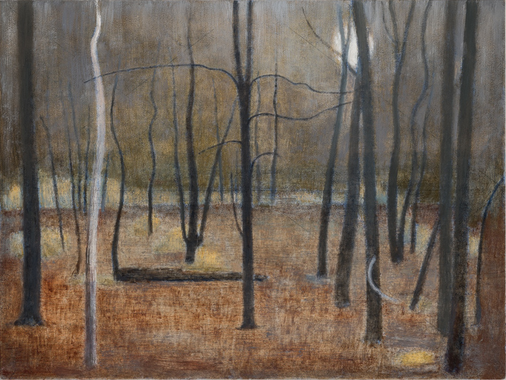 Moon in Woods, 2016 -2017, Oil on Panel, 9 x 12 inches     Circumstances    March 2 - March 24, 2019    Opening Reception, Saturday March 2, 6 - 8 pm    John Davis Gallery   362 1/2 Warren Street  Hudson, NY 12534  518 828 5907