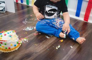 Elliots+smash+cake+photos-8_AL.jpg