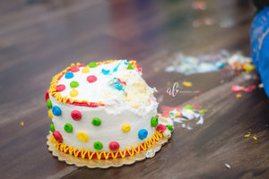 Elliots+smash+cake+photos-11_AL.jpg