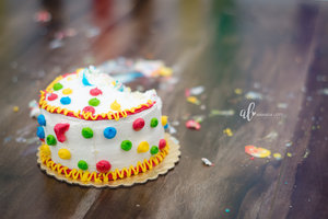 Elliots+smash+cake+photos-23_AL.jpg