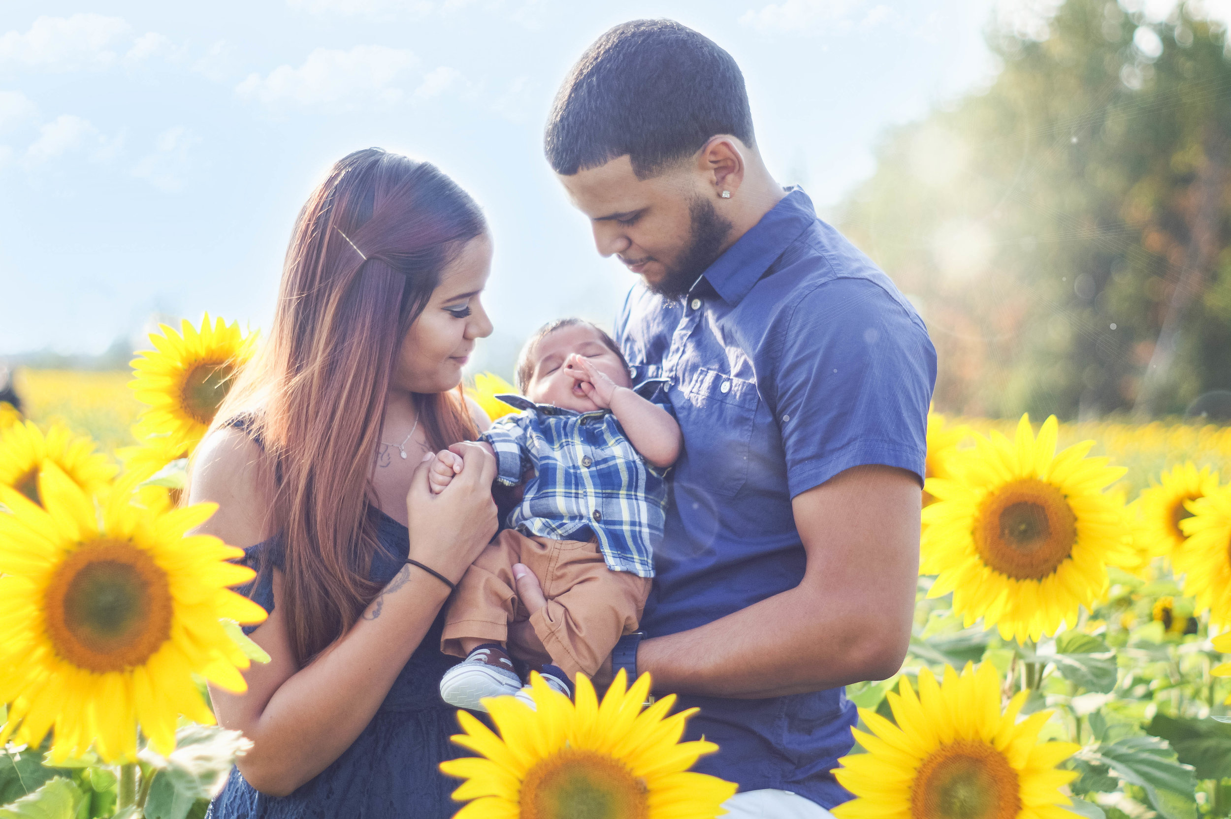 Beautiful Little Family