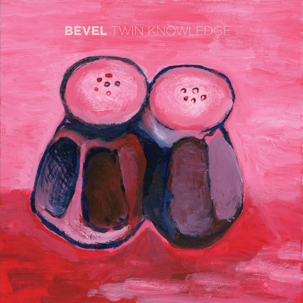 bevel twinknowledge_cover.jpg