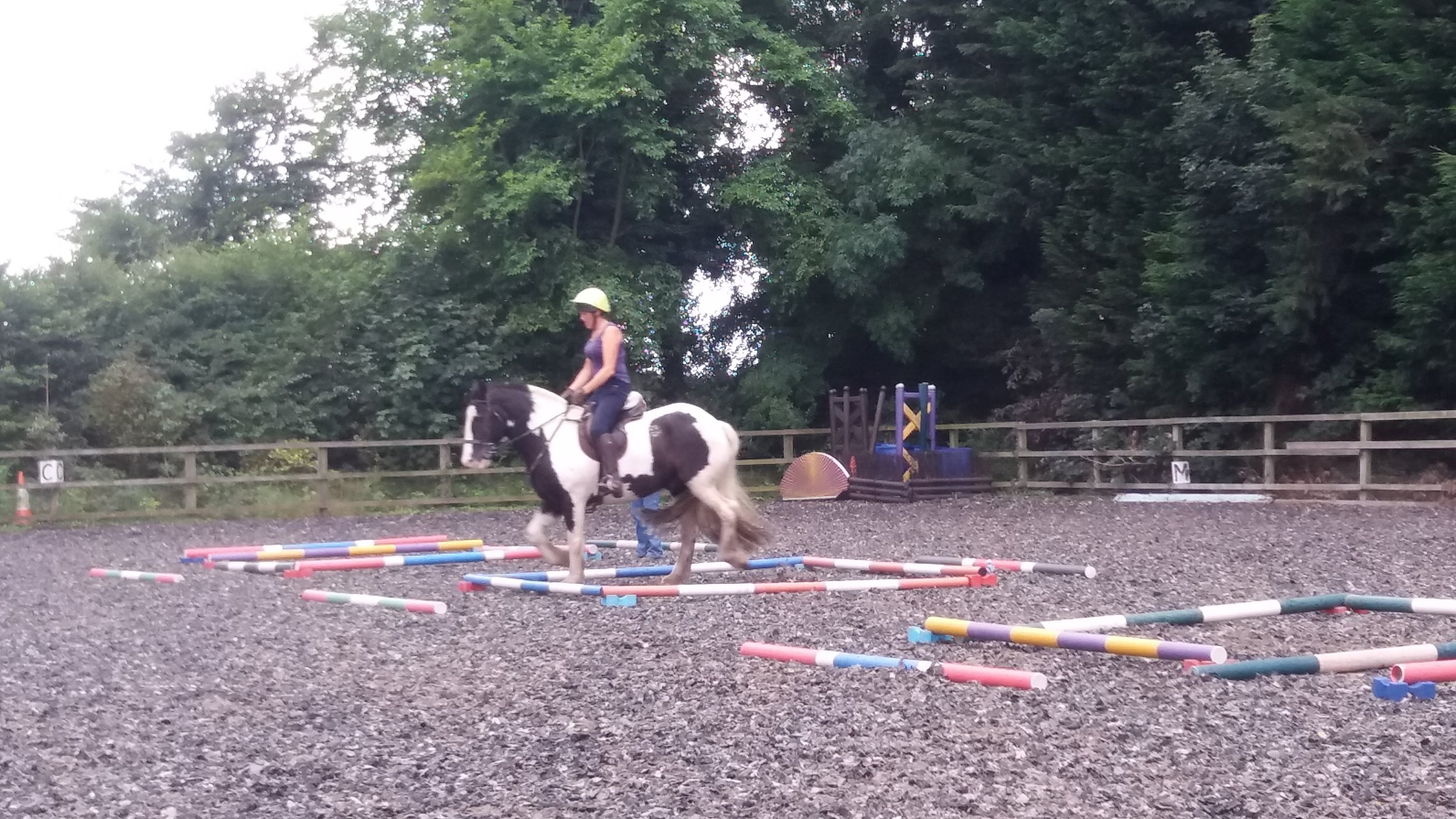 Equigym Clinic - Nicky and Trampas July 2017