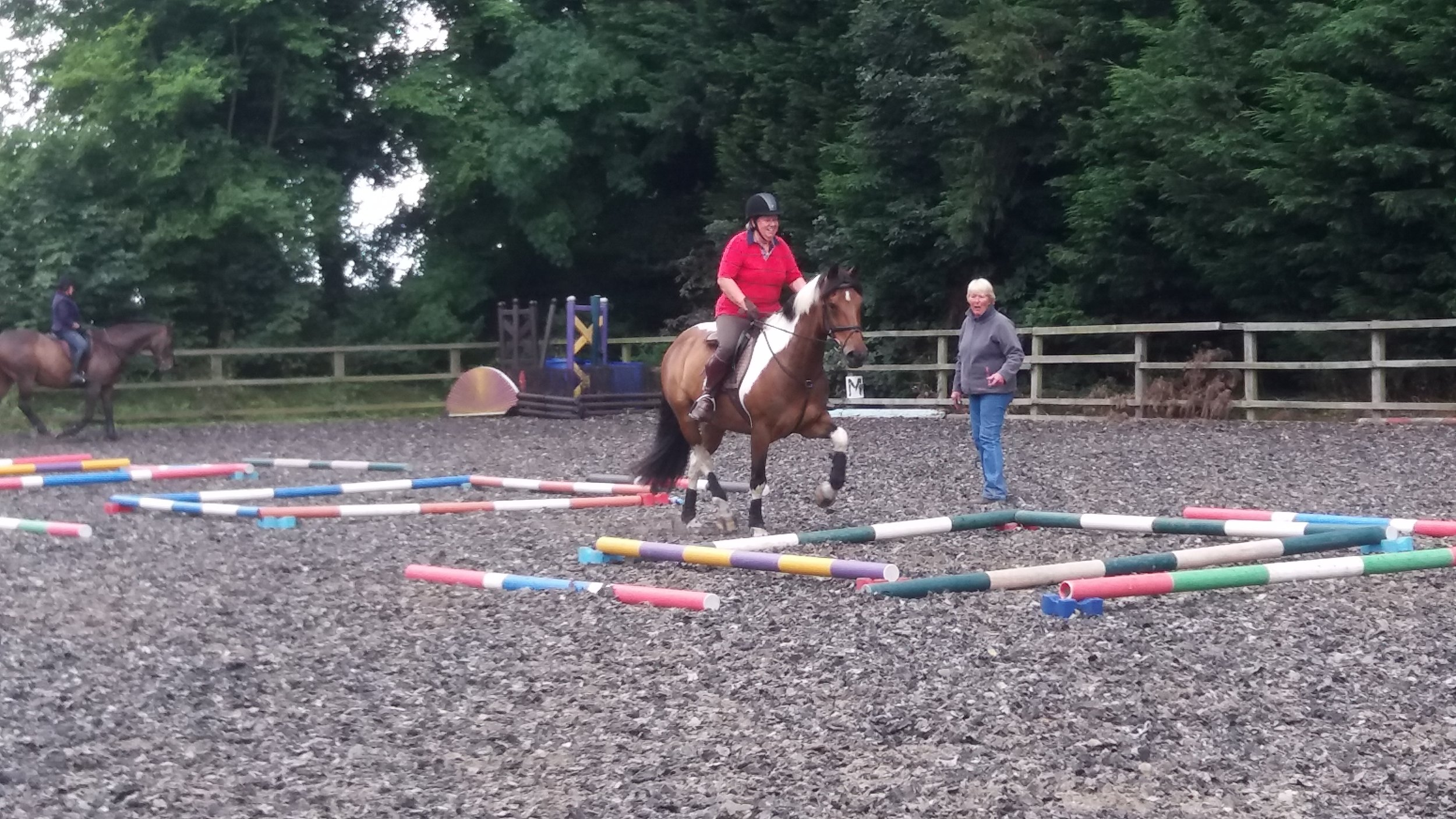 Equigym Clinic July 2017 - hard work but still smiling!