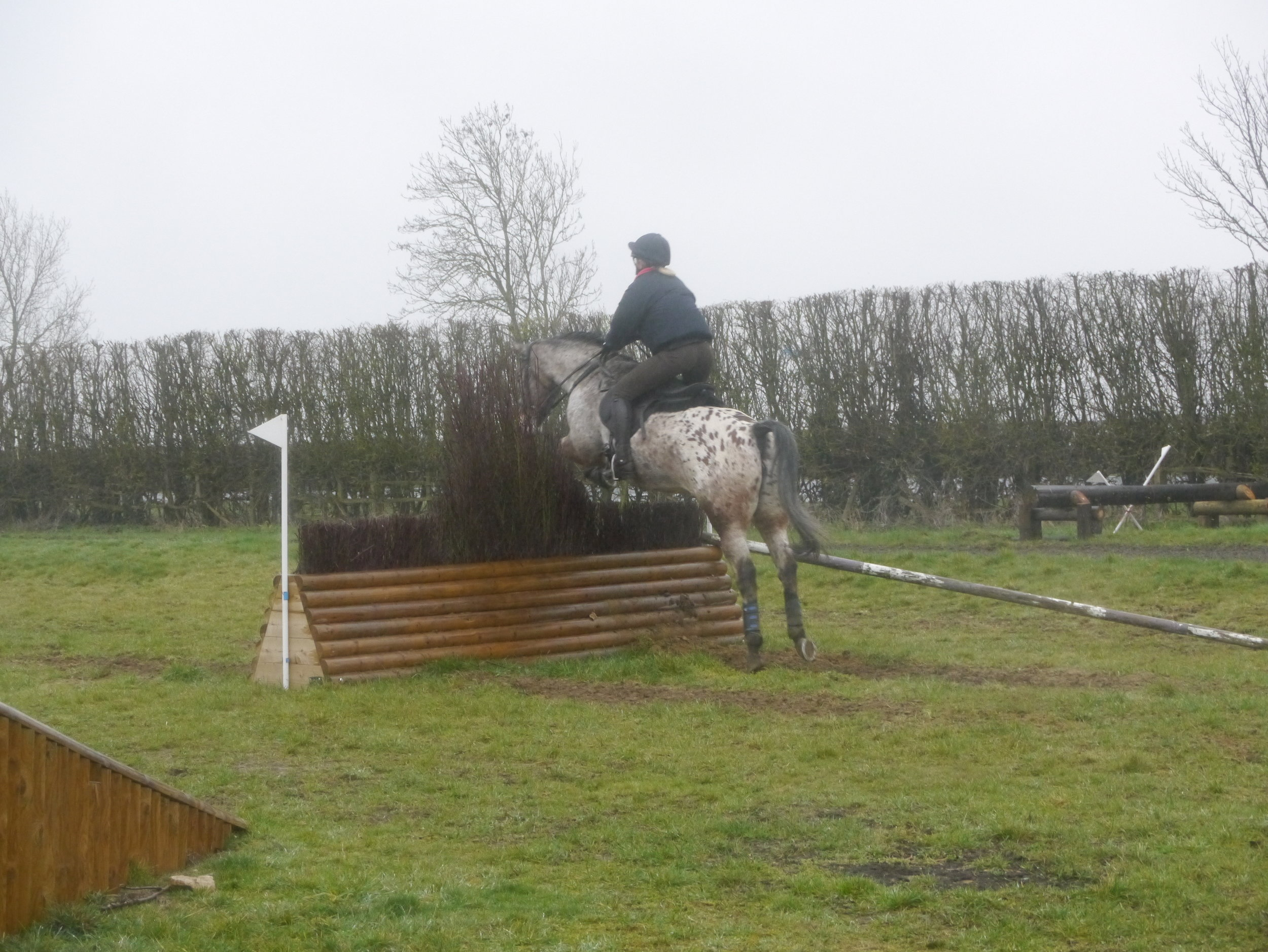 XC training with eventer Richard Jones - Alice Turner and Indi.