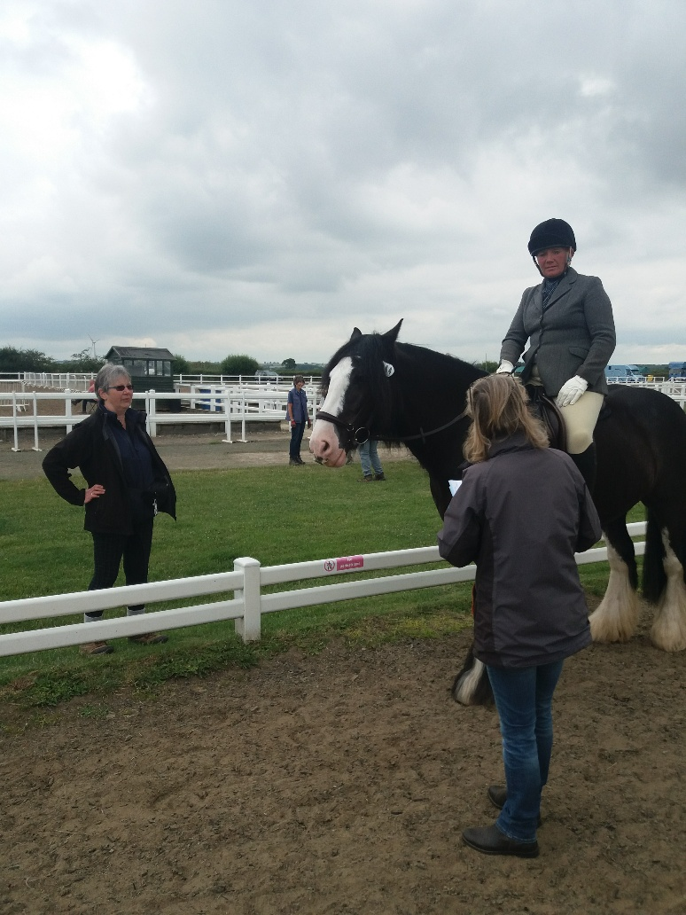 Sarah, Jane and Rachel riding Jake at Summer Dressage Qualifier 13 July.