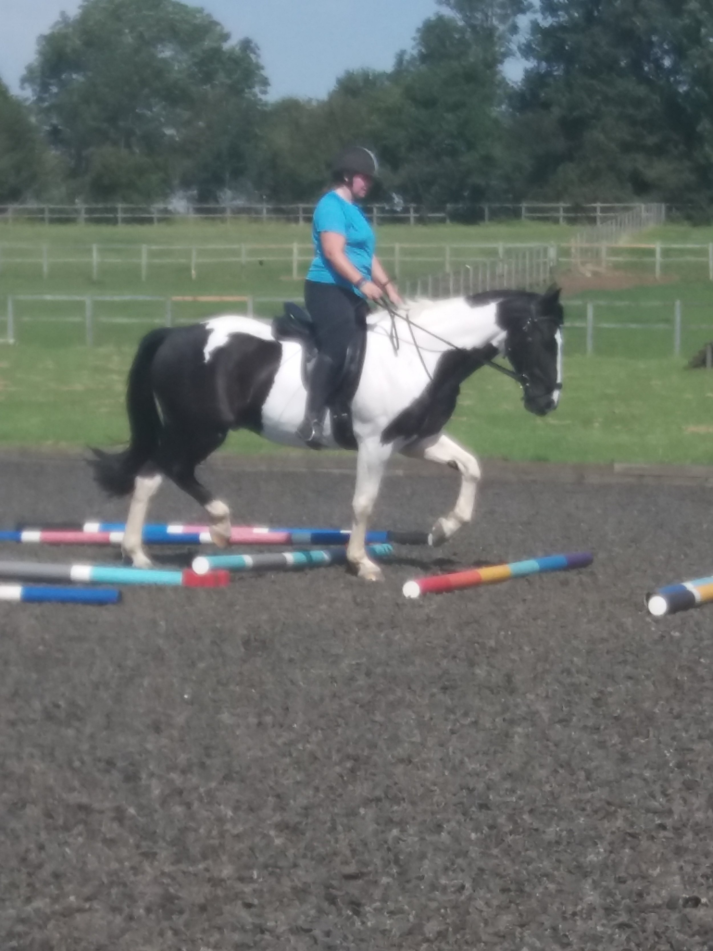 Poles Clinic with Claire Llewellyn on a very hot day in August . Nicky riding Claude