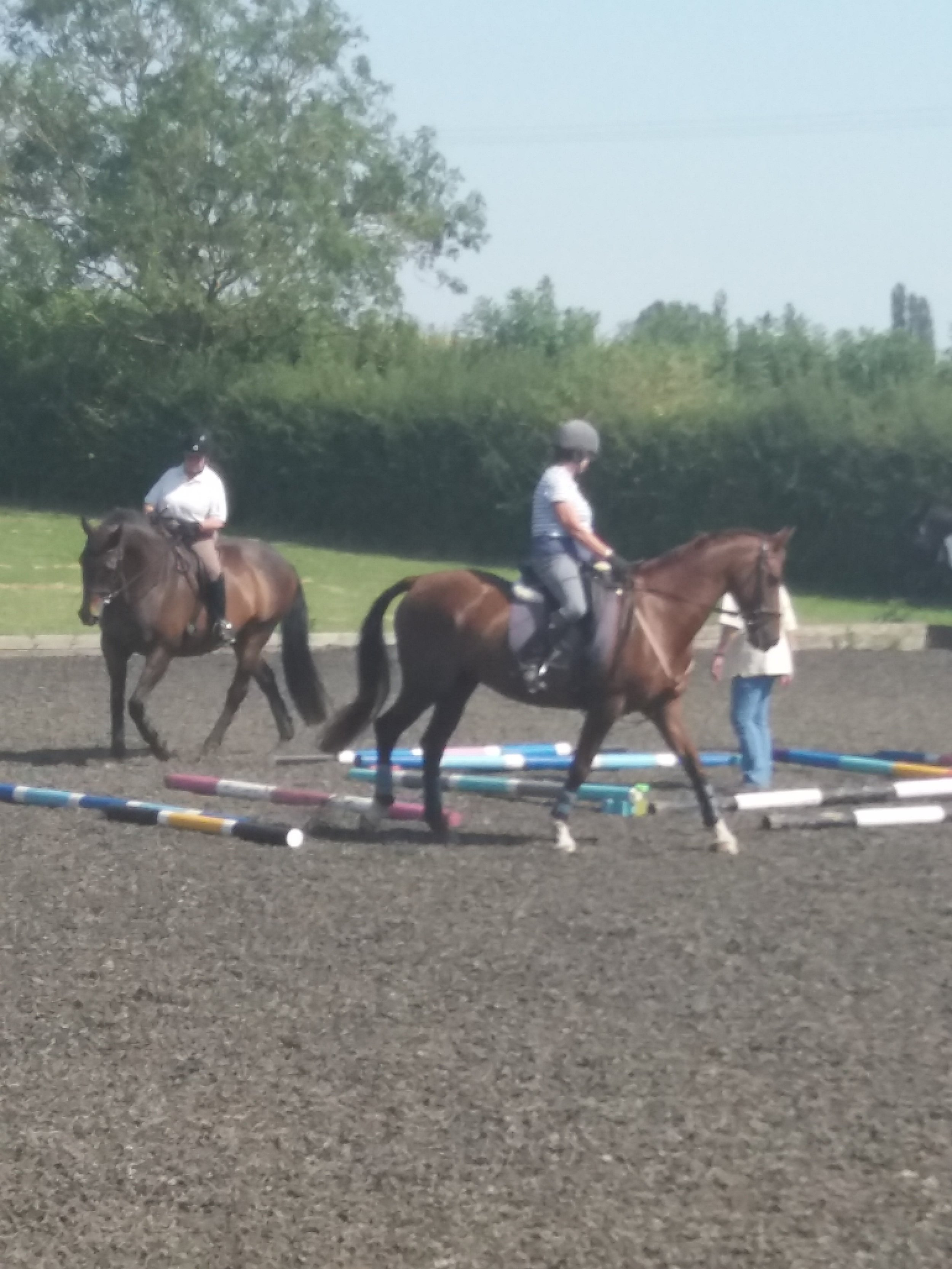 Poles Clinic with Claire Llewellyn on a very hot day in August . Rosemary riding Robin and …