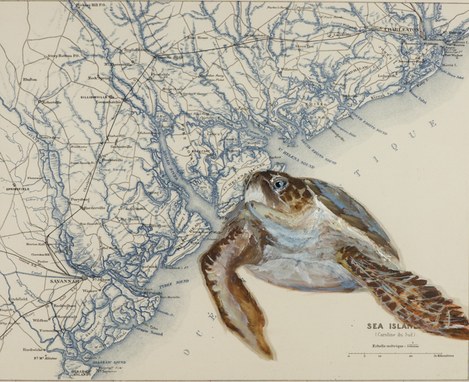 Turtle Sea Islands map web .jpeg