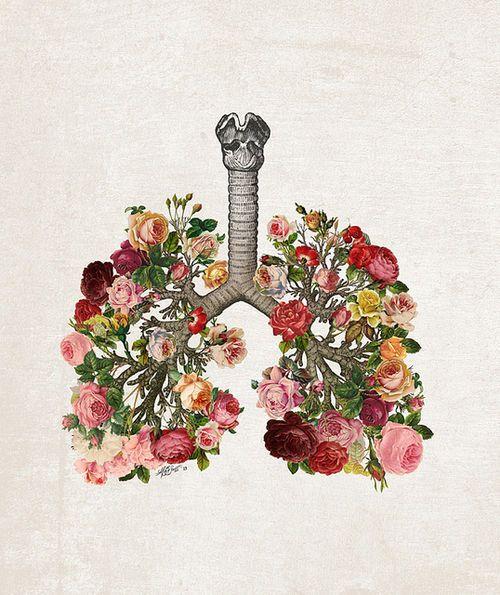 Image taken from  Pinterest