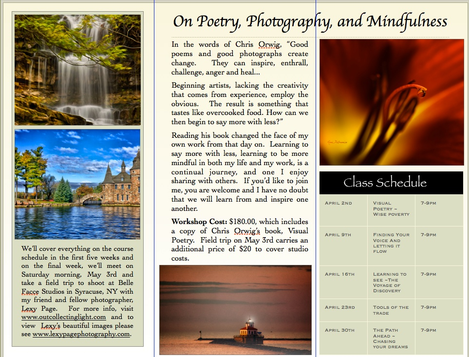 Example of inside tri-fold brochure, designed by Roni Delmonico/The Photographer's Palette, www.outcollectinglight.com.