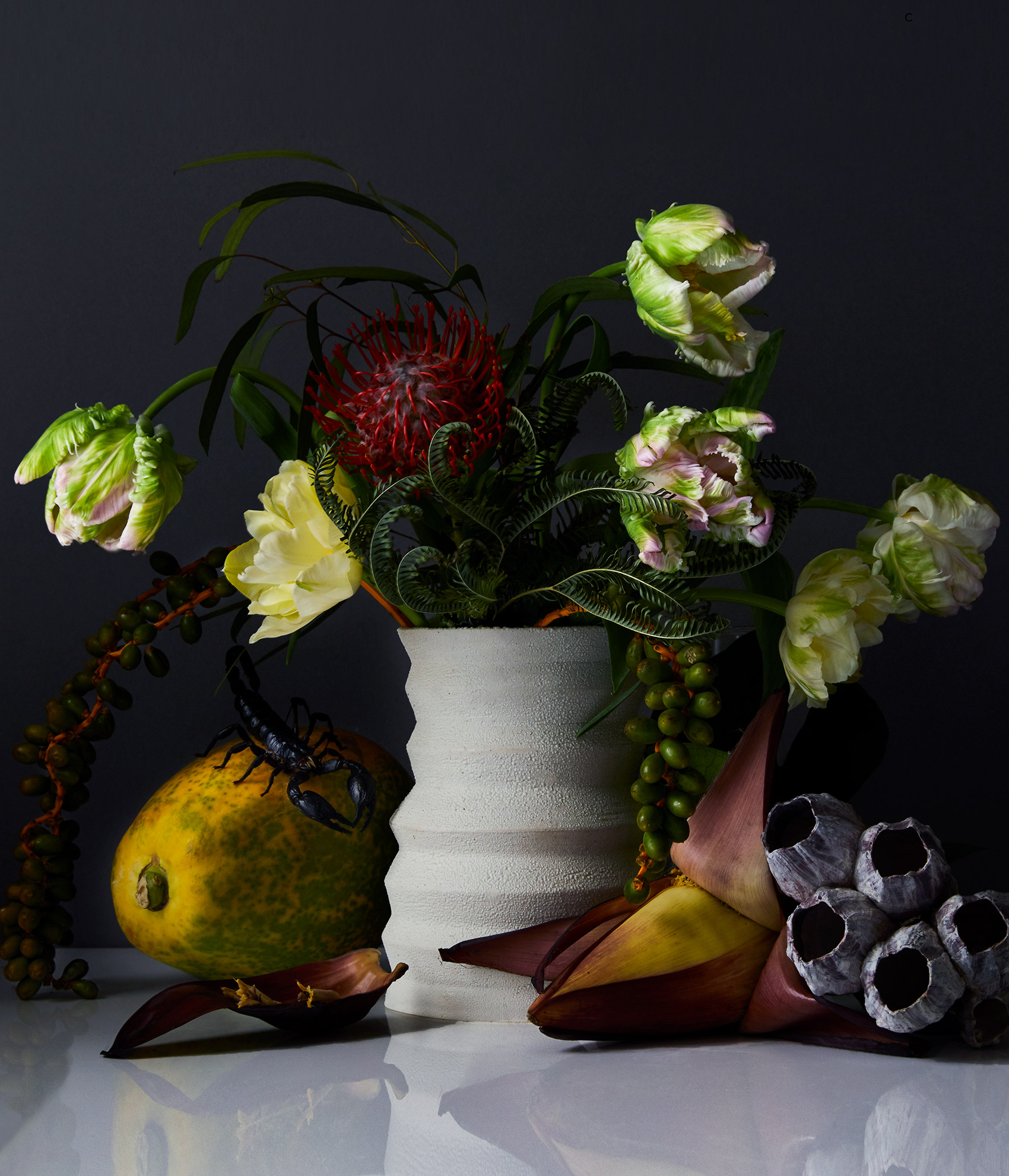 Oddbouquet-Floral-Stilllife-Photographer-George-Barberis.jpg