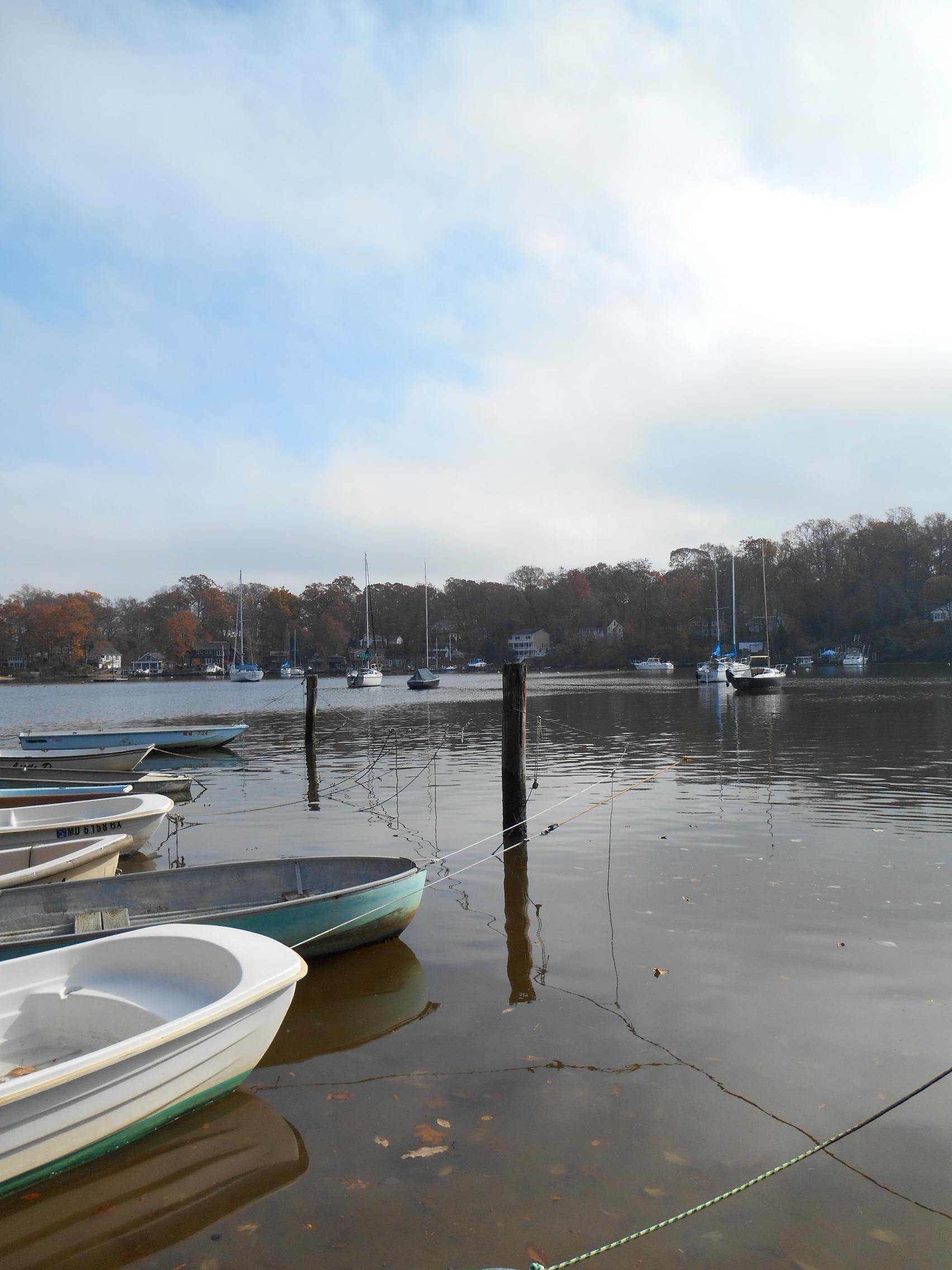 Lark is the dark blue sailboat with dark blue cover waaaay out on her moorings on Valentine Creek - Sunday November 17