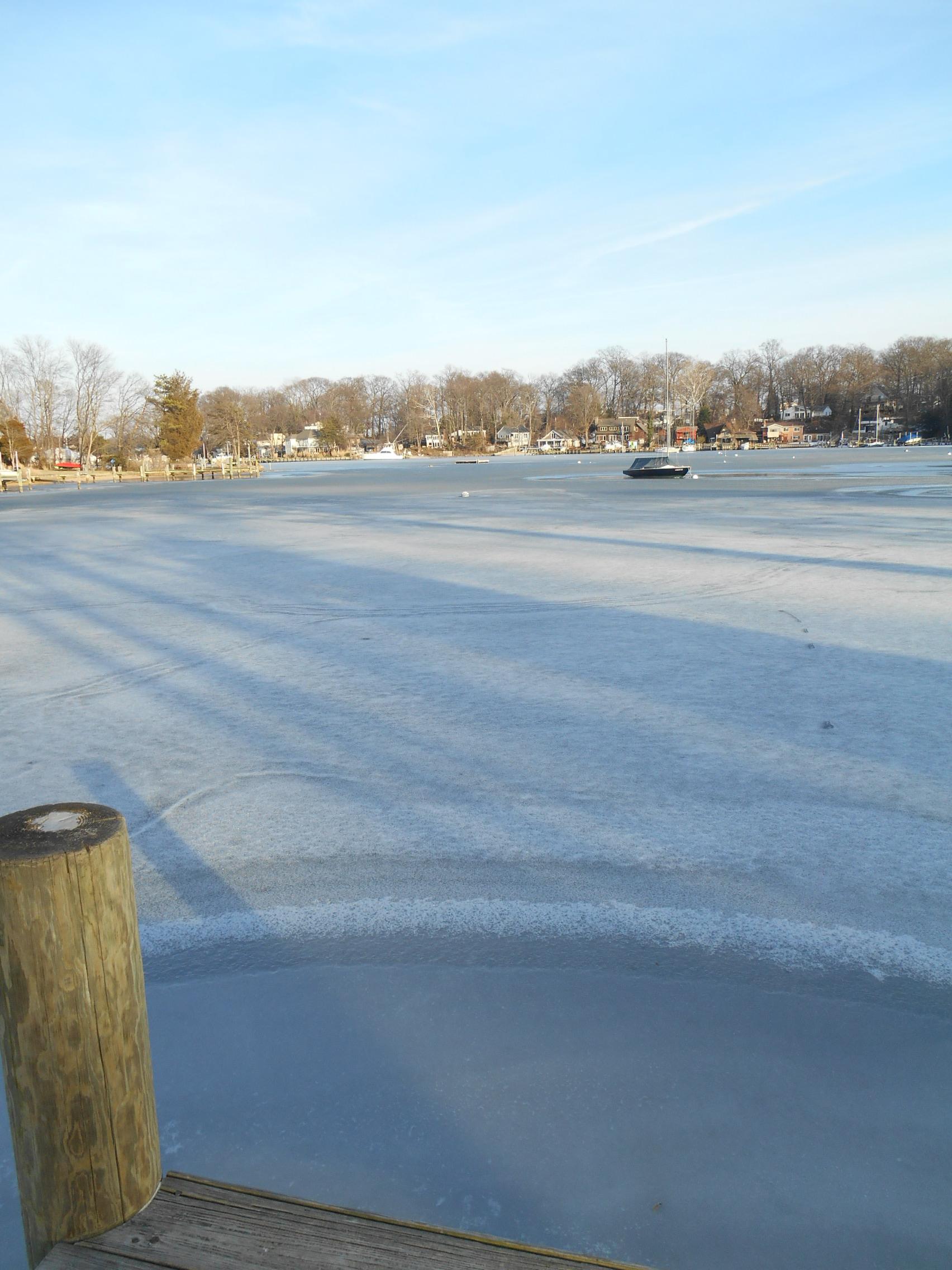 Lark swings alone in the ice ...