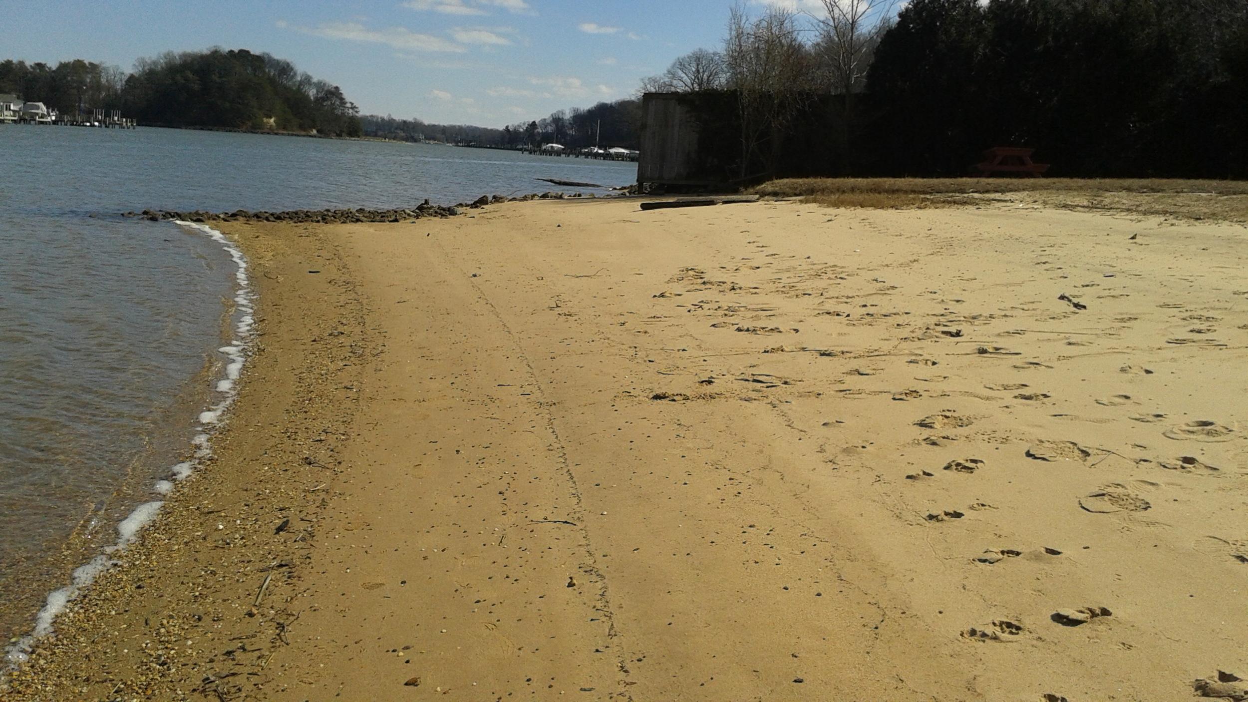 Feb 5th Beach 2