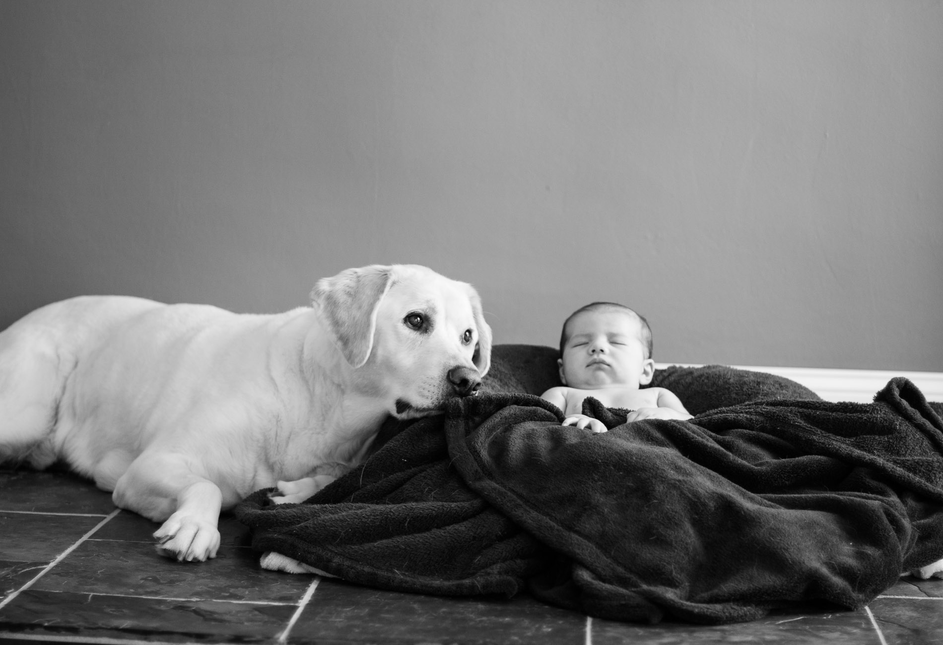 Newborn and Doggie