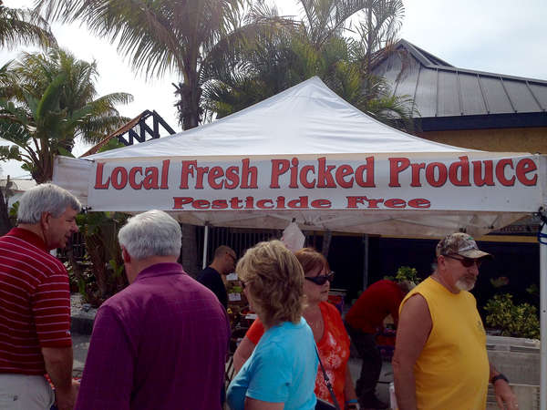 Gary Parke's produce stand at the Mid-Week Madeira Beach Open Air Market. (LARA CERRI | Times)